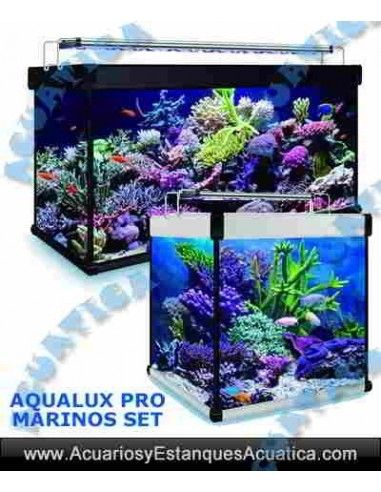 Acuario kit aqualux pro marino 240 for Acuario marino precio