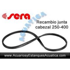 RECAMBIO JUNTA CABEZA DE...